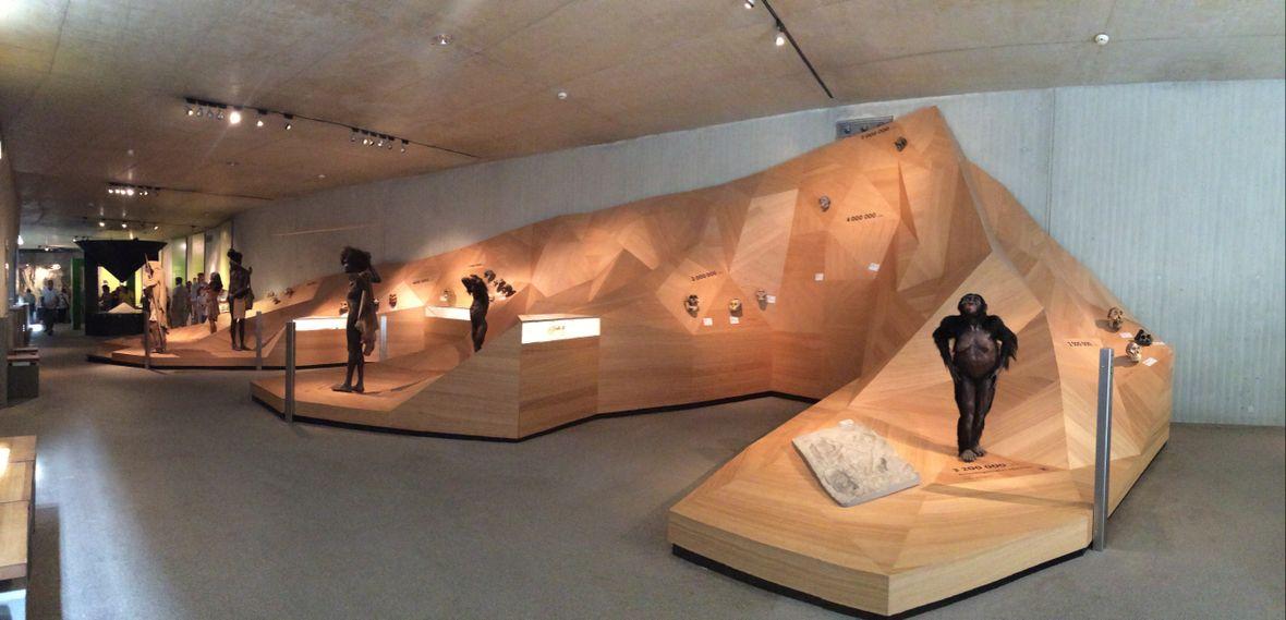 Neanderthal Museum in Mettmann