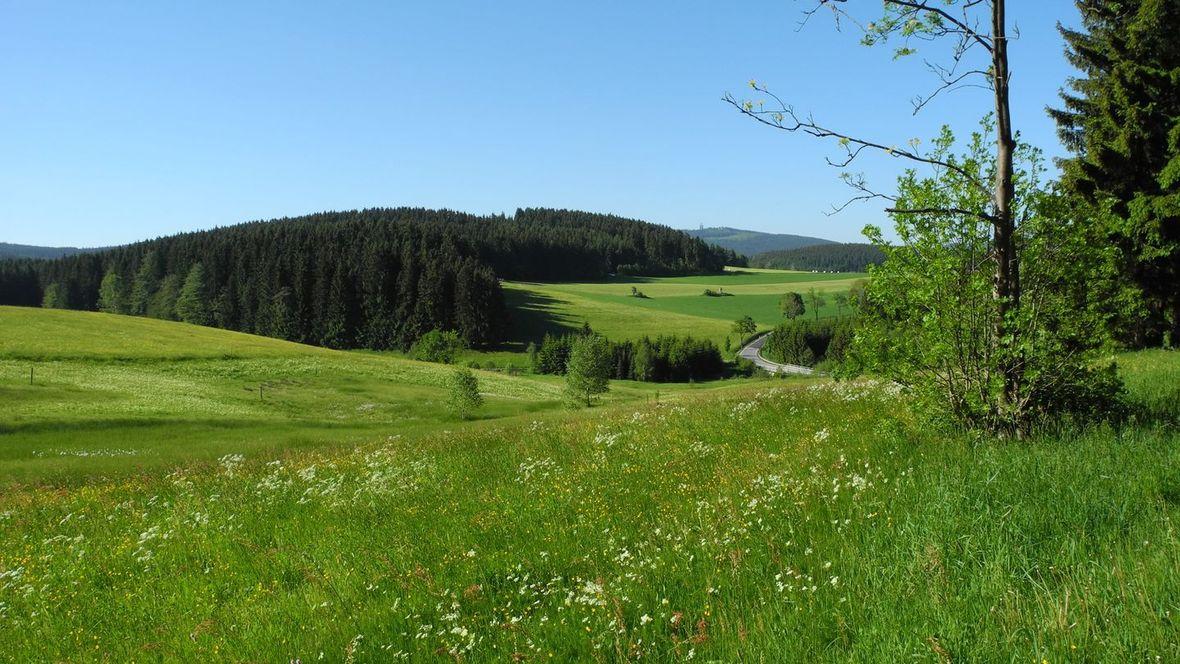 Eibenstock Ore Mountains