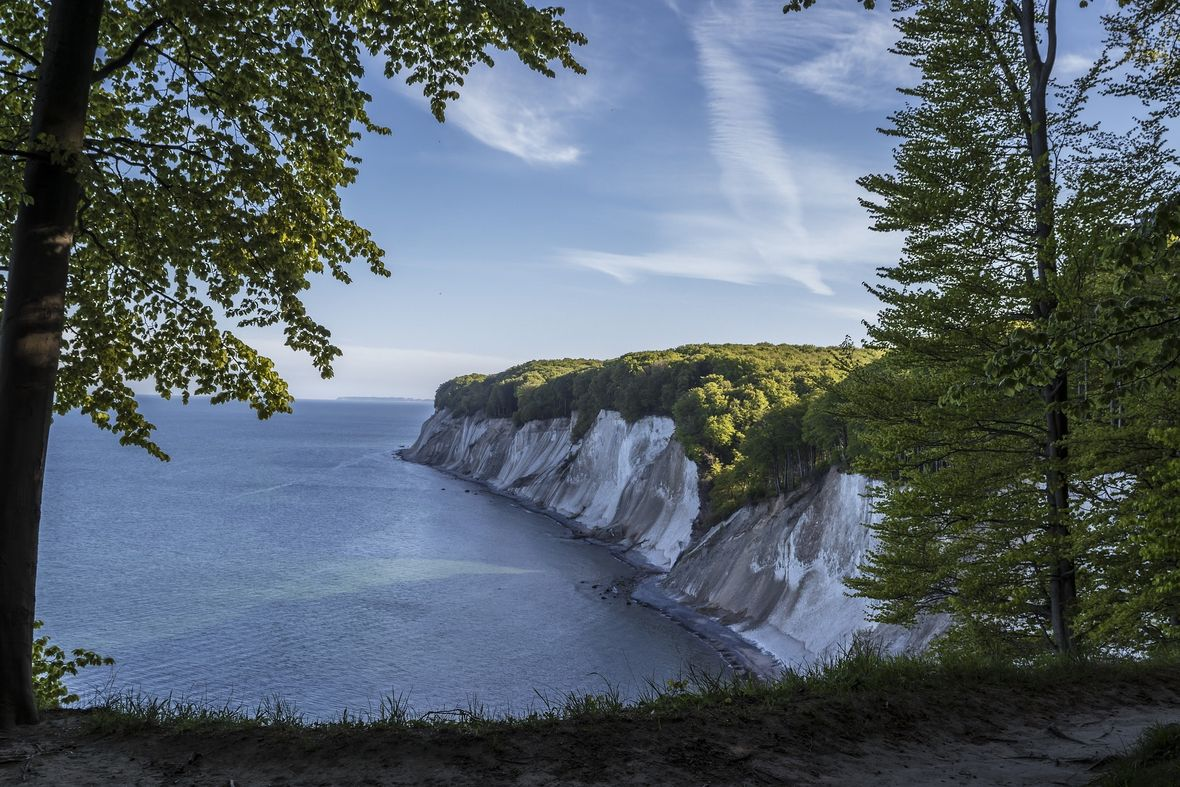 Jasmund national park