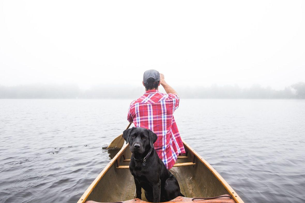 Urlaub mit Hund in Oberbayern