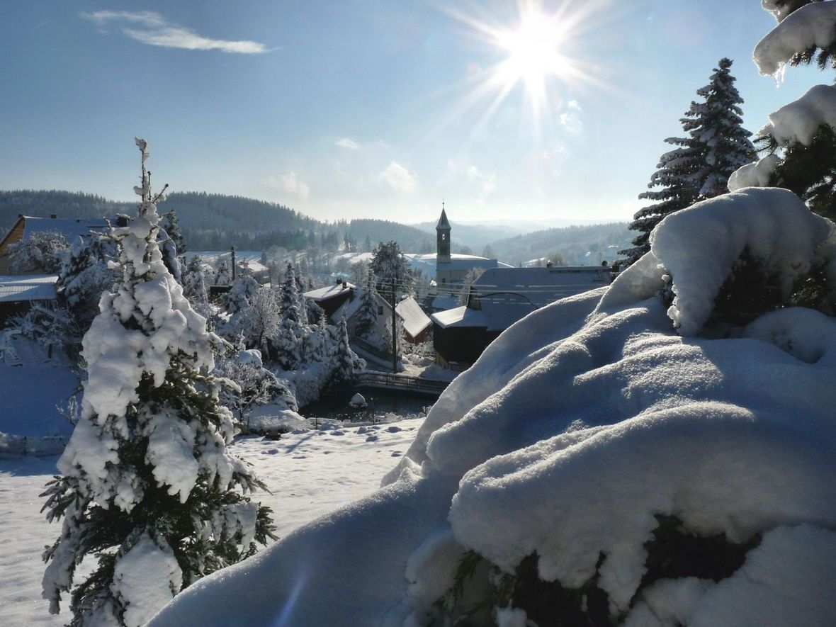 Winter in Saxon Switzerland