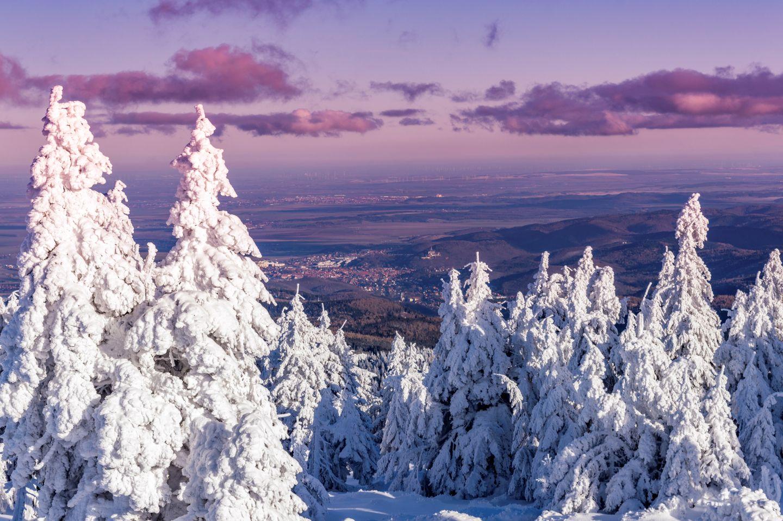 Harz Wunderland