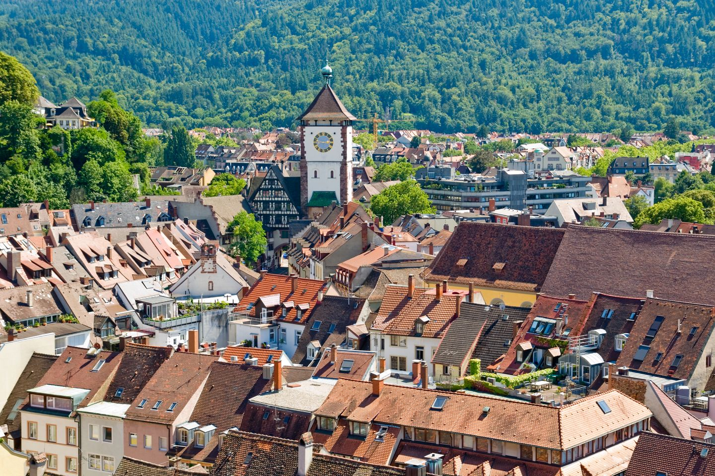 Freiberg city view