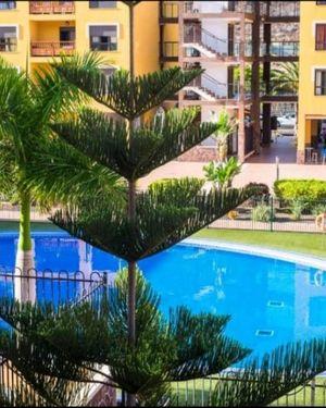 Palm Mar Terrace Apartament