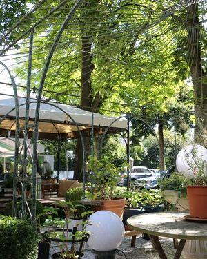 hotel ashleys garden