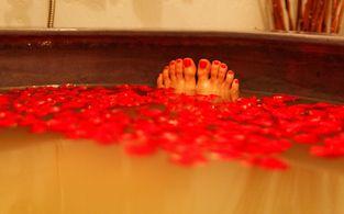 hotel rheinpark rees   tage im hotel rheinpark rees erleben mit sauna
