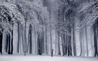 schlosshotel furstlich drehna winter wochenende