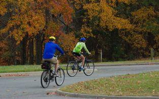 zum alten ritter fahrradtouren rund um bad bodenteich freitag sonntag