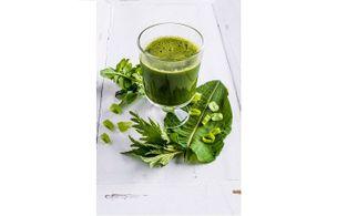 biolandgut tiefleiten greensmoothie detox