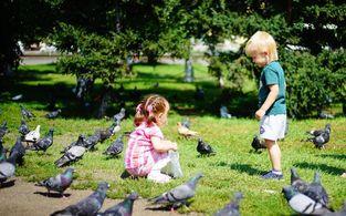 wyndham garden dresden   tage im   wyndham garden dresden erleben and geniessen familienpaket