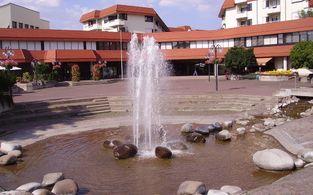 limburgerhof hotel and residenz   tage an der deutschen weinstrasse im hotel residenz limburgerhof