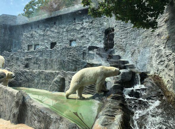 Zoologischer Garten der Hauptstadt Prag