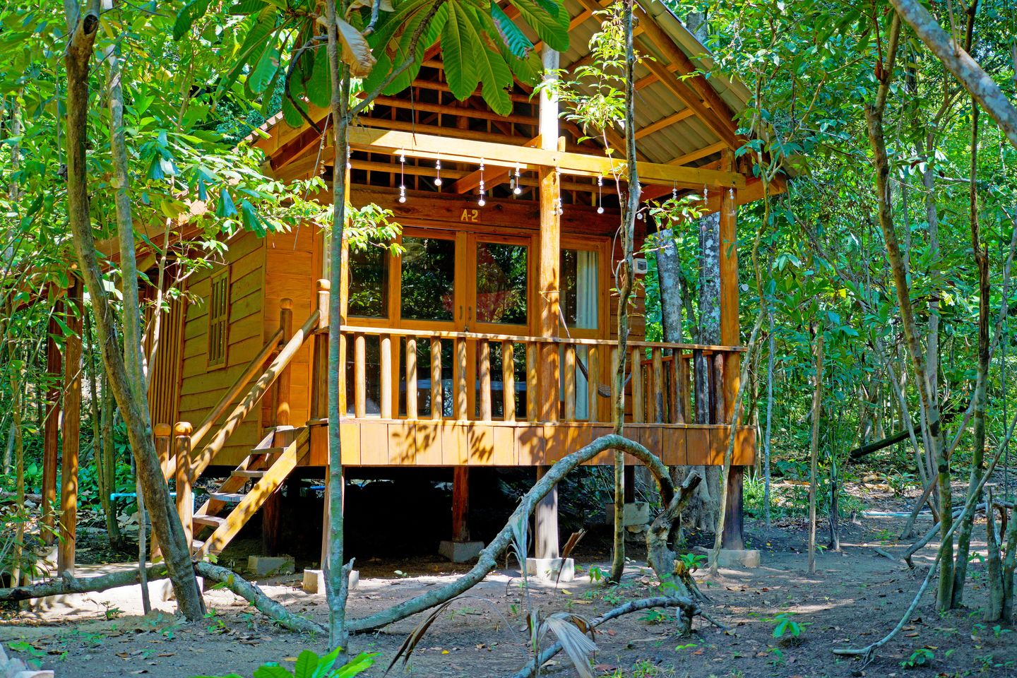 Tree House Bungalows.8 Jungle House 4 People.hotels/74a443139a295d2b14a8b6f93515adb6c8576919/room/tree-house-bungalows-8-jungle-house-4-people-73982.jpg