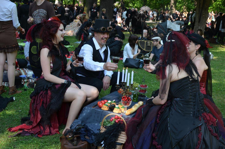 Viktorianisches Picknick 2017