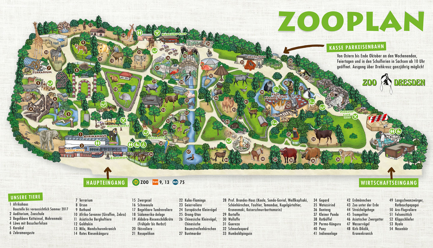 Zoo Dresden plan - map of the territory