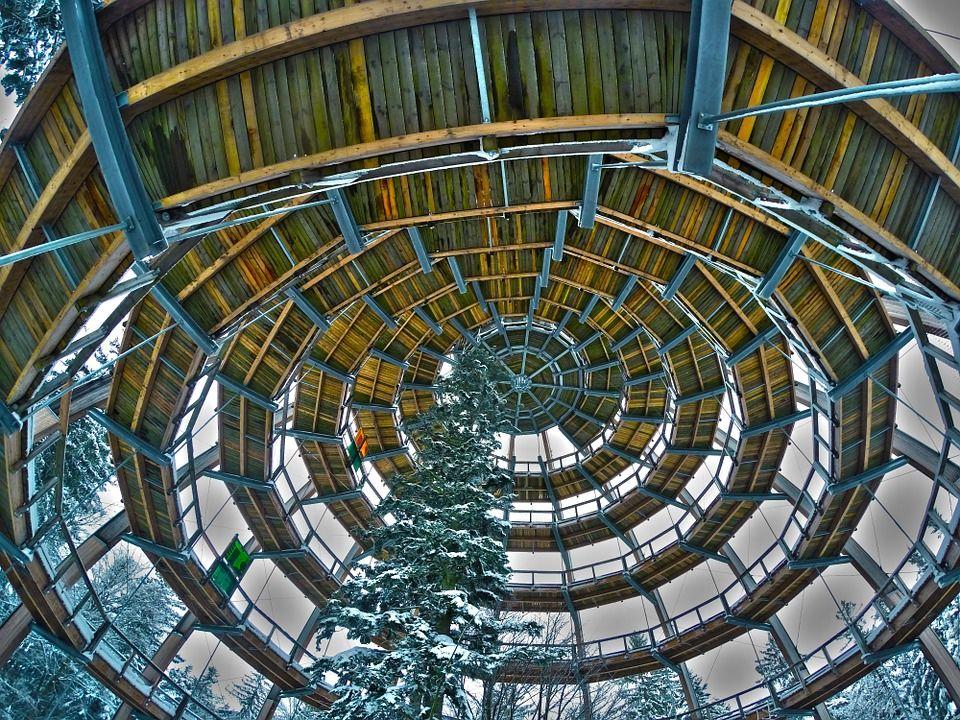 Baumwipfelpfad inside