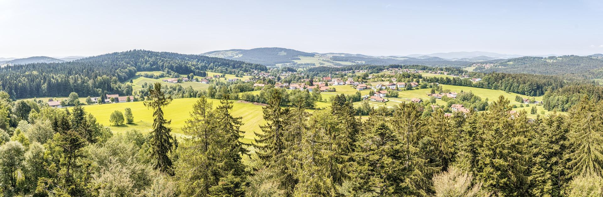 Bärenpfad Grafenau - Neuschönau