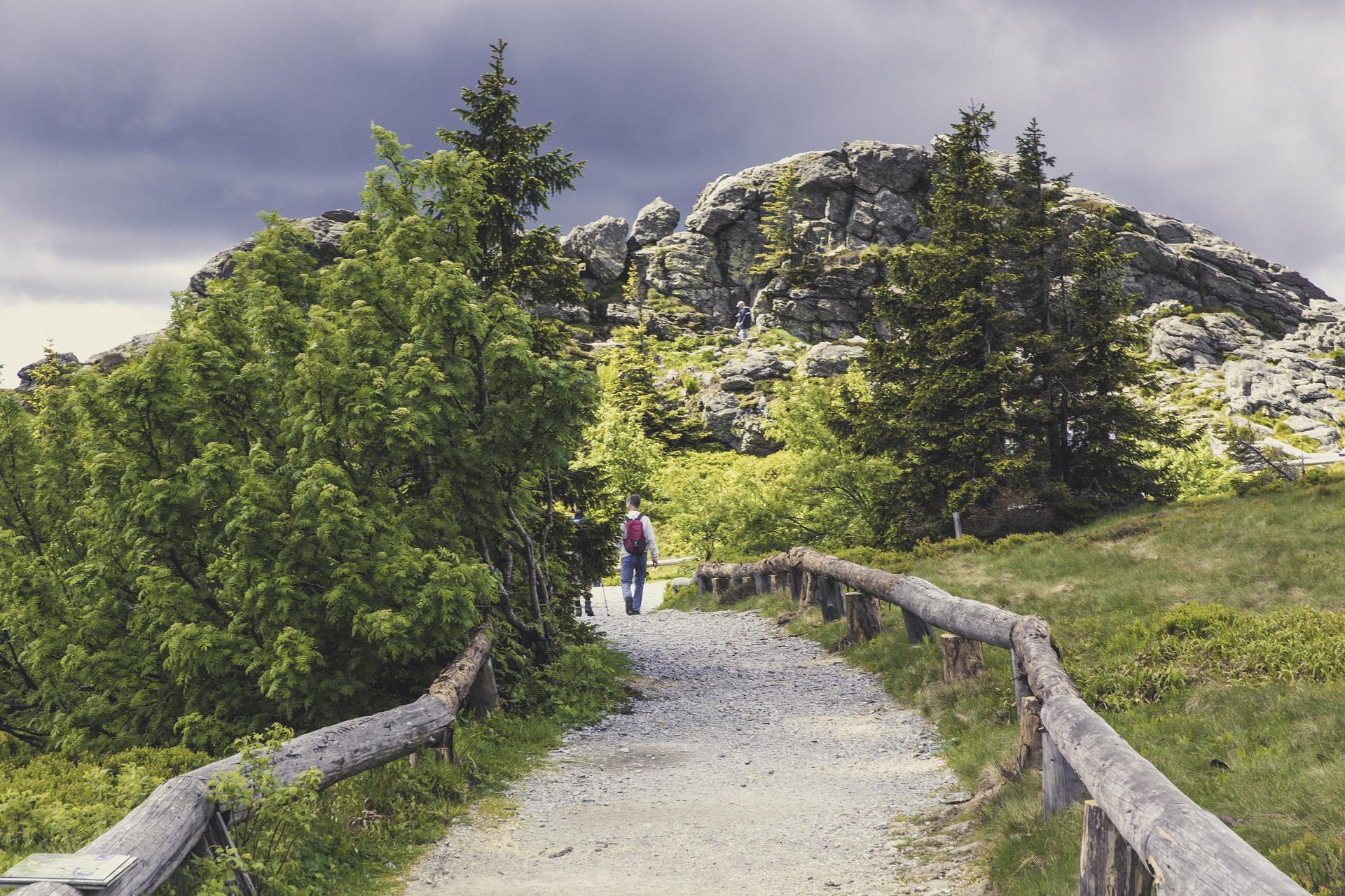 bavarian forest hiking